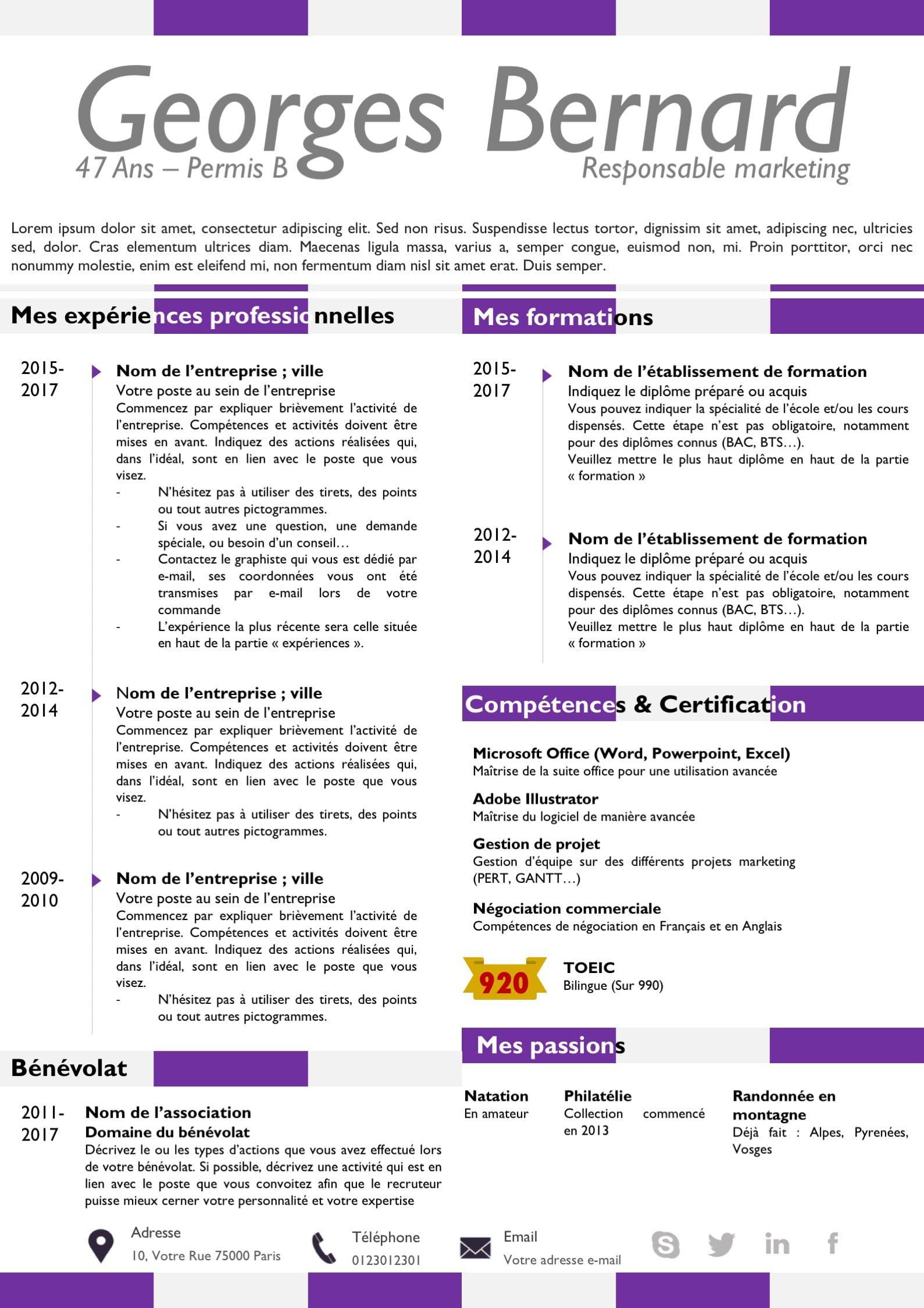 cv violet avec des lignes  cv avec pictogrammes et une