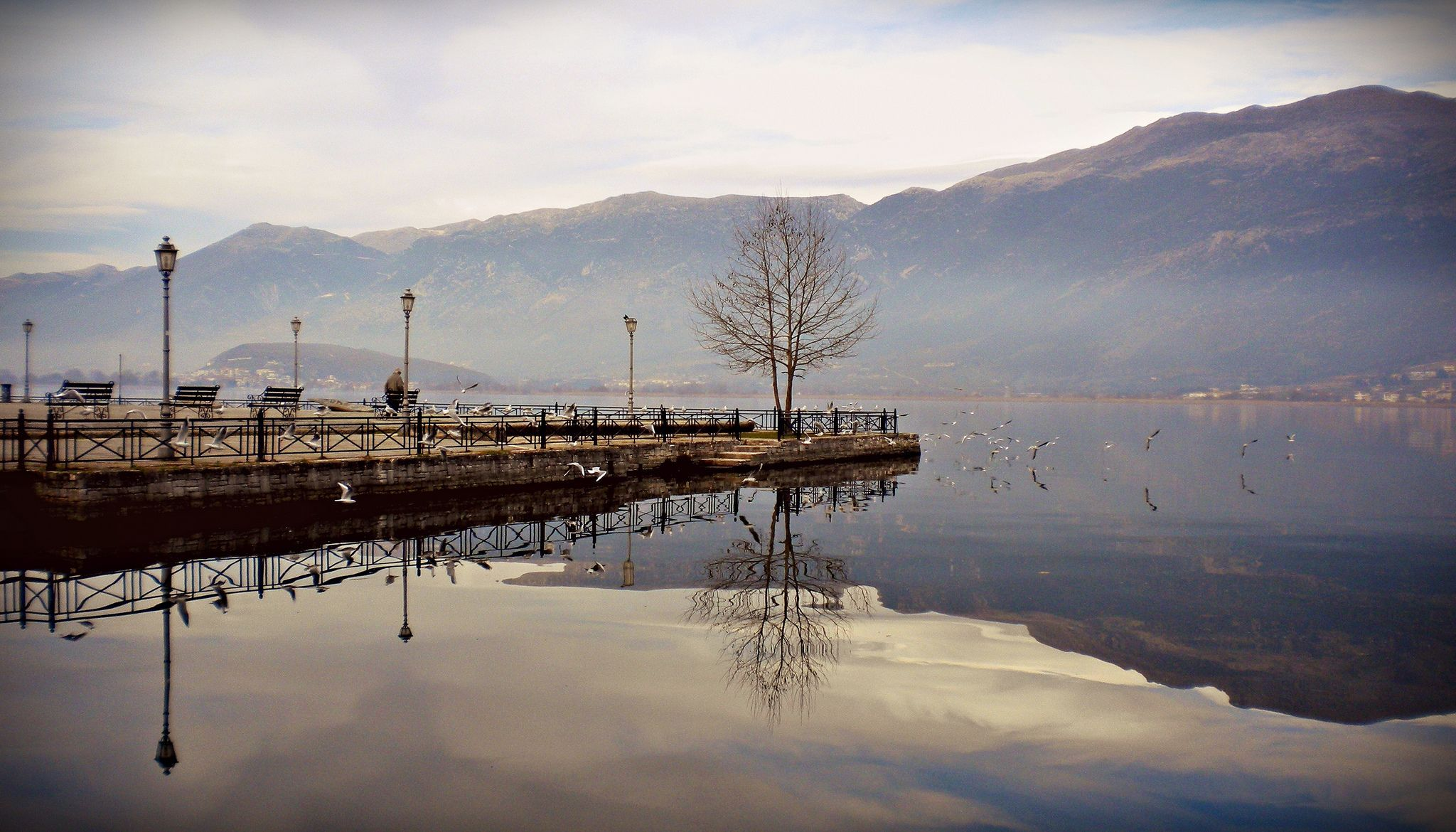 Winter #ioannina-grecce Lake Pamvotida, Ioannina (Greece) - January 2011 #ioannina-grecce