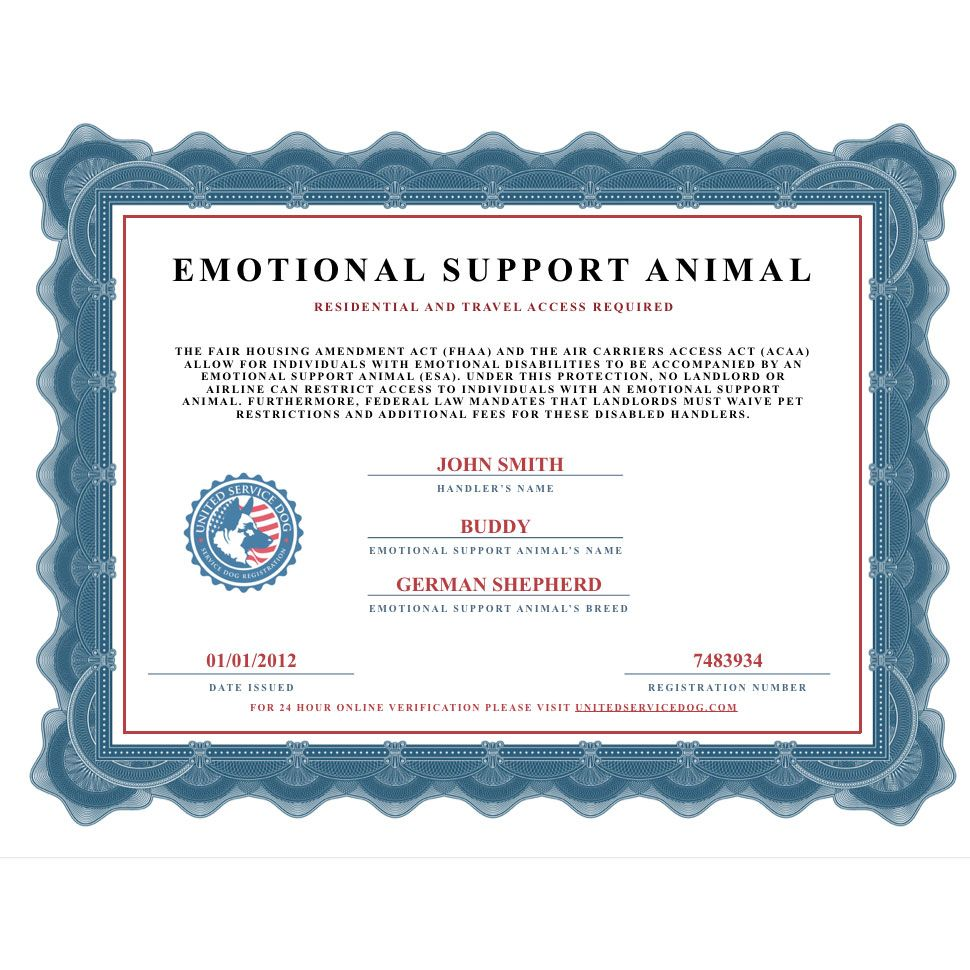 Emotional Support Animal Certificate United Service Dog Emotional Support Animal Emotional Support Dog Emotional Support