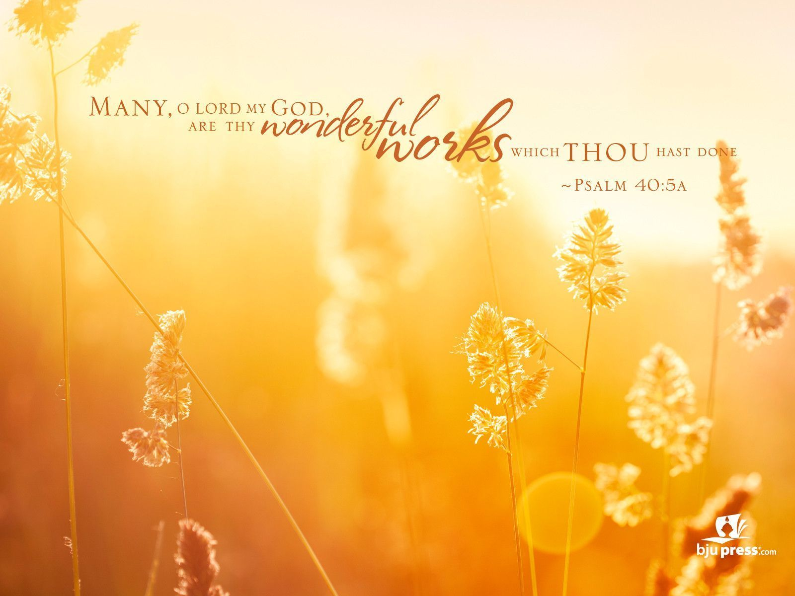 Christian Desktop Wallpaper with Scripture | Best Free ...