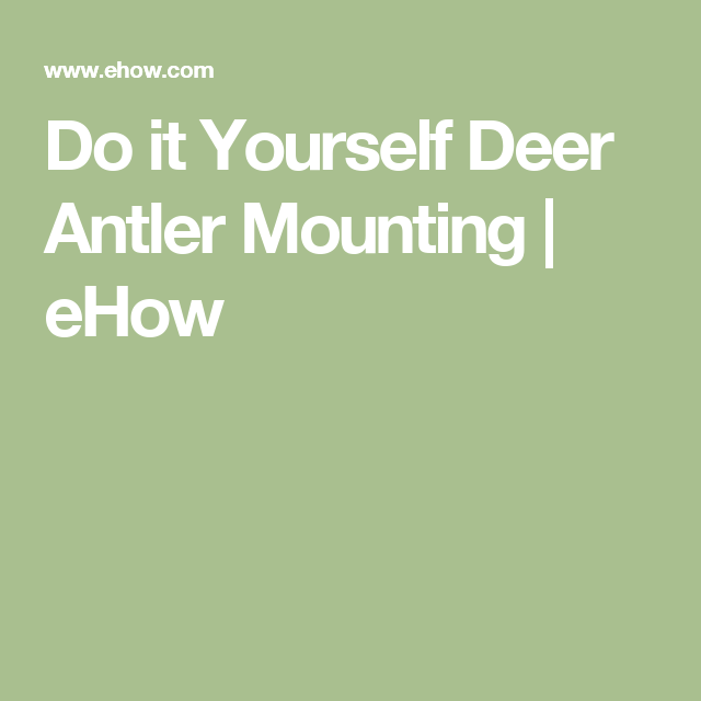 Do it Yourself Deer Antler Mounting | eHow