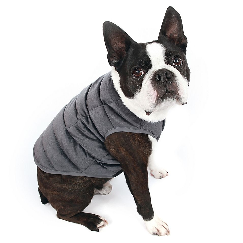 Therapedic Medium Weighted Pet Vest In Grey Pets Boston Terrier Love Pet Clothes