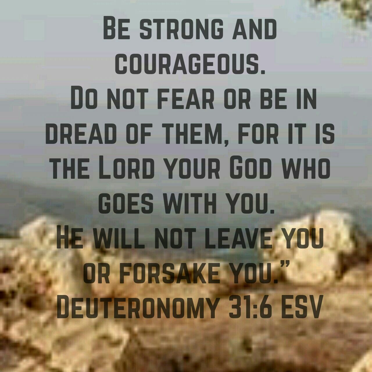 Be strong and courageous. He will never leave us. Bible quote. Trust in God   Inspirational scripture, Inspirational words, Words of wisdom