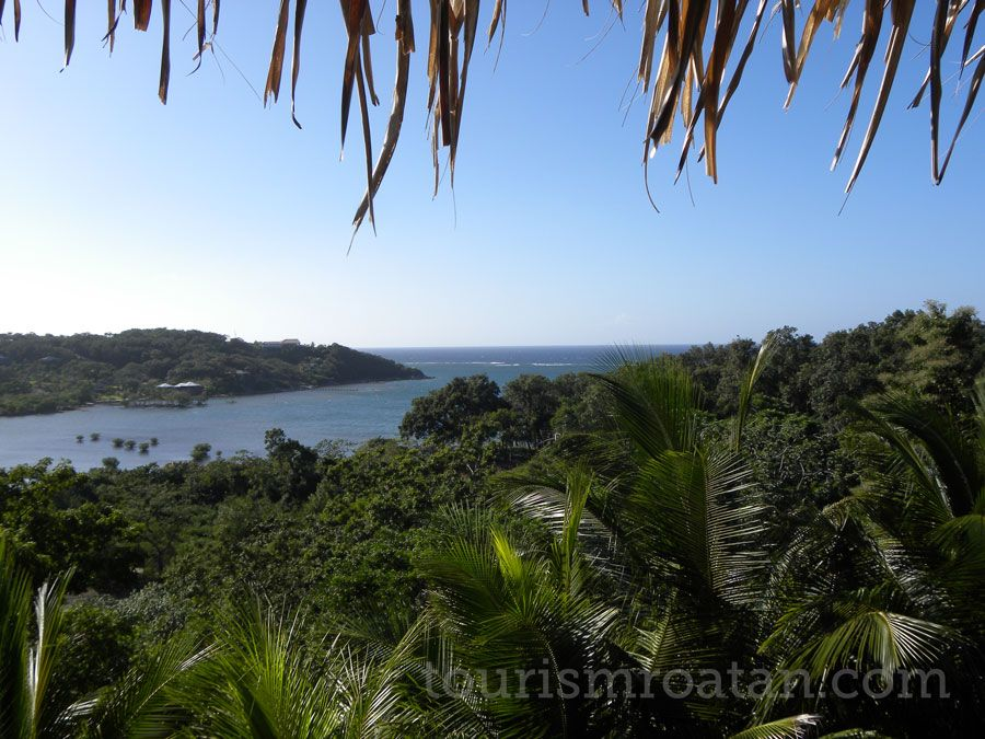 View From Marble Hill Farms Crow S Nest Restaurant In East Roatan Roatan Marble Hill Crow S Nest