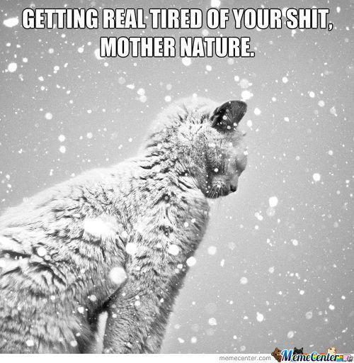Snow Jokes for Adults | Previous gag Next gag