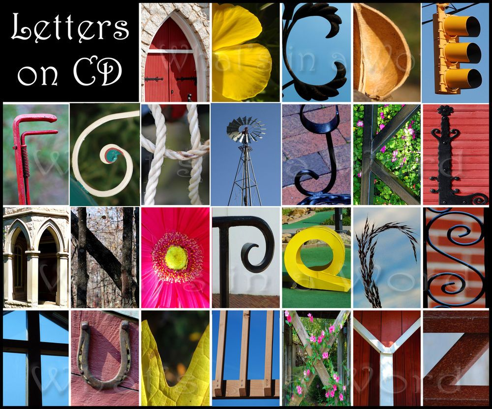 Nature Alphabet Alphabet Photography Letter Photography Letter Art Photography