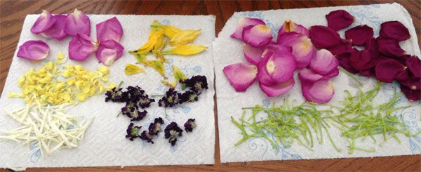 flowers dried by a customer