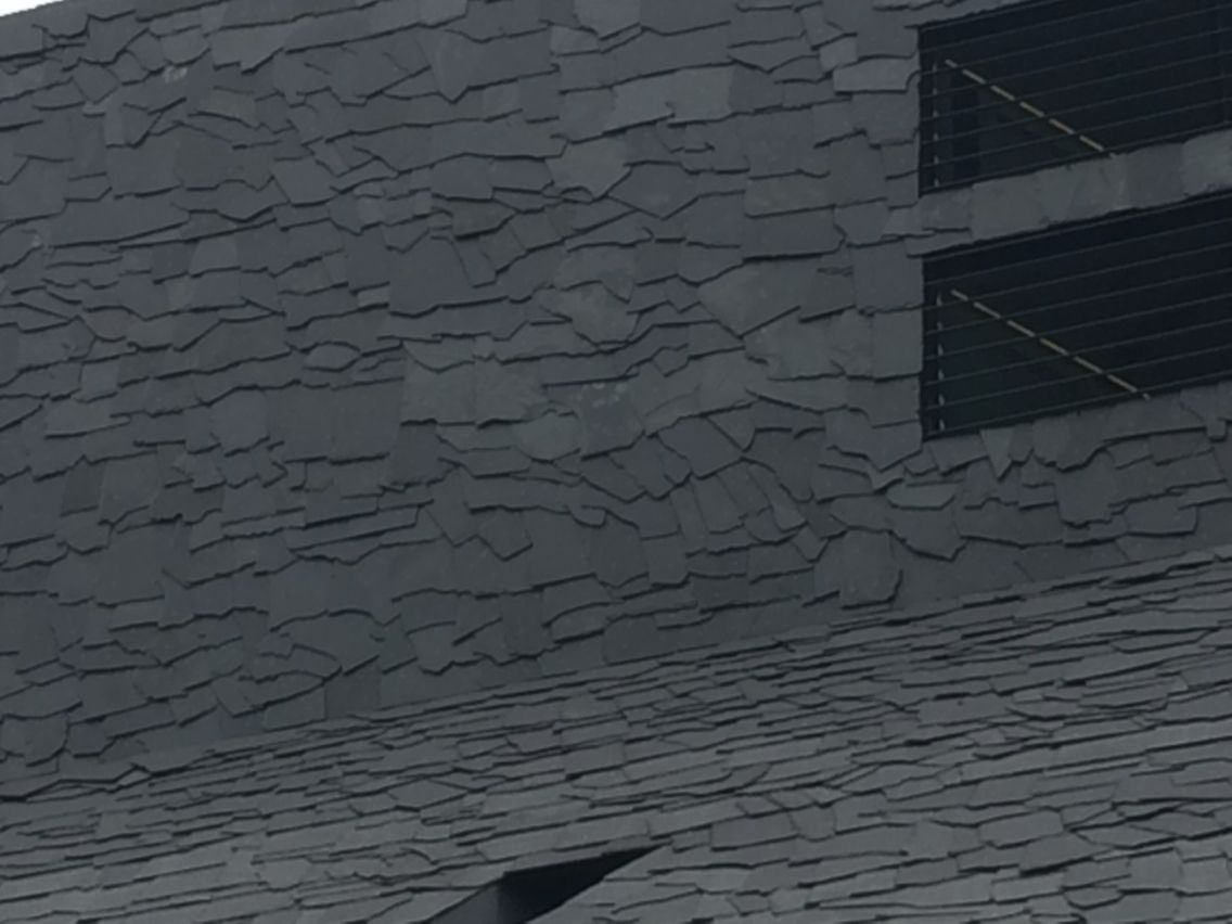 Leisteen zwart wildverband