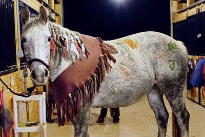 selezione migliore 71d95 561e5 Horse Fancy Dress Ideas: Red Indian | Horse Costumes | Horse ...