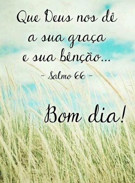 Facebook Bom Dia Imagens De Bom Dia Mensagens De Bom Dia E