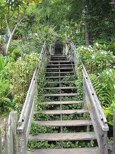 Hidden stairways - Filbert Steps lead to Coit Tower