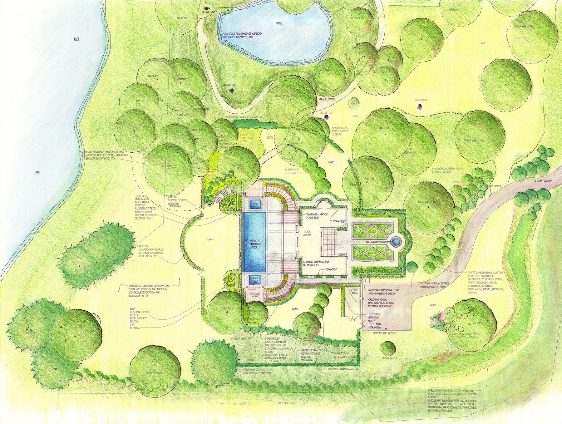 Art Drawing Rendering Colored Pencil Landscape Garden Design Illustration Plan Pool Planting Architect