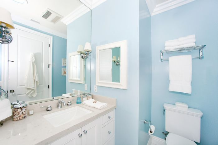 Impressive Light Blue Bathroom Light Blue Bathroom Brown Bathroom Decor Blue Bathroom Decor