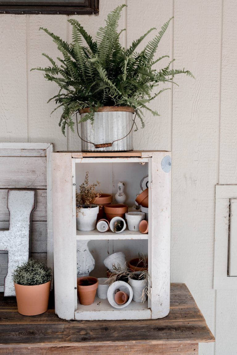 Watering and Decorating with Ferns  indoor plant decor and care To decorate with real plants means to create a living jewelry that needs good care With some imagination t...