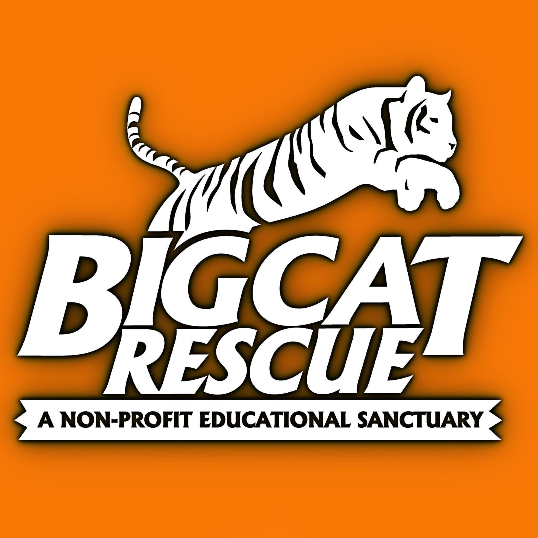 Big Cat Rescue logo. Big Cat Rescue, Tampa, Florida Big