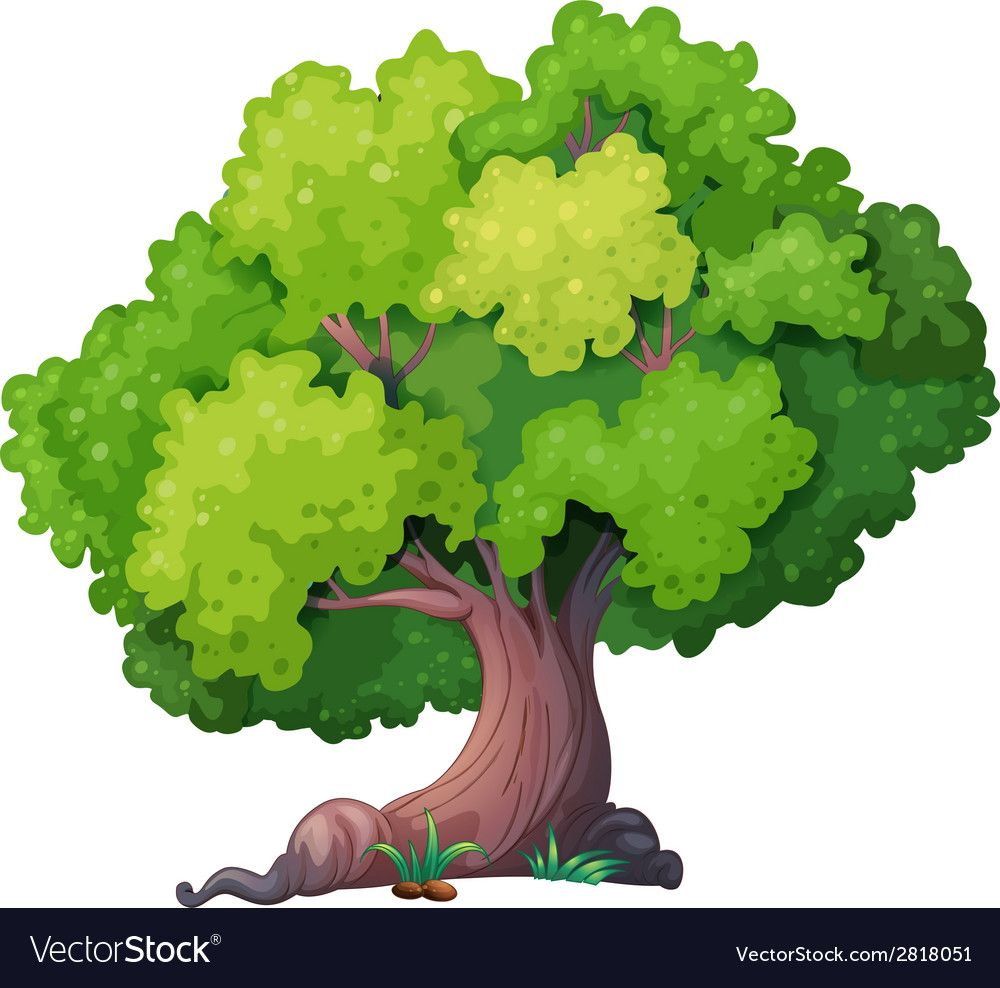 A Closeup Tree Download A Free Preview Or High Quality Adobe Illustrator Ai Eps Pdf And High Resolution Jpeg Version Picture Tree Cartoon Trees Illustration Download high quality cartoon tree clip art from our collection of 41,940,205 clip art graphics. cartoon trees