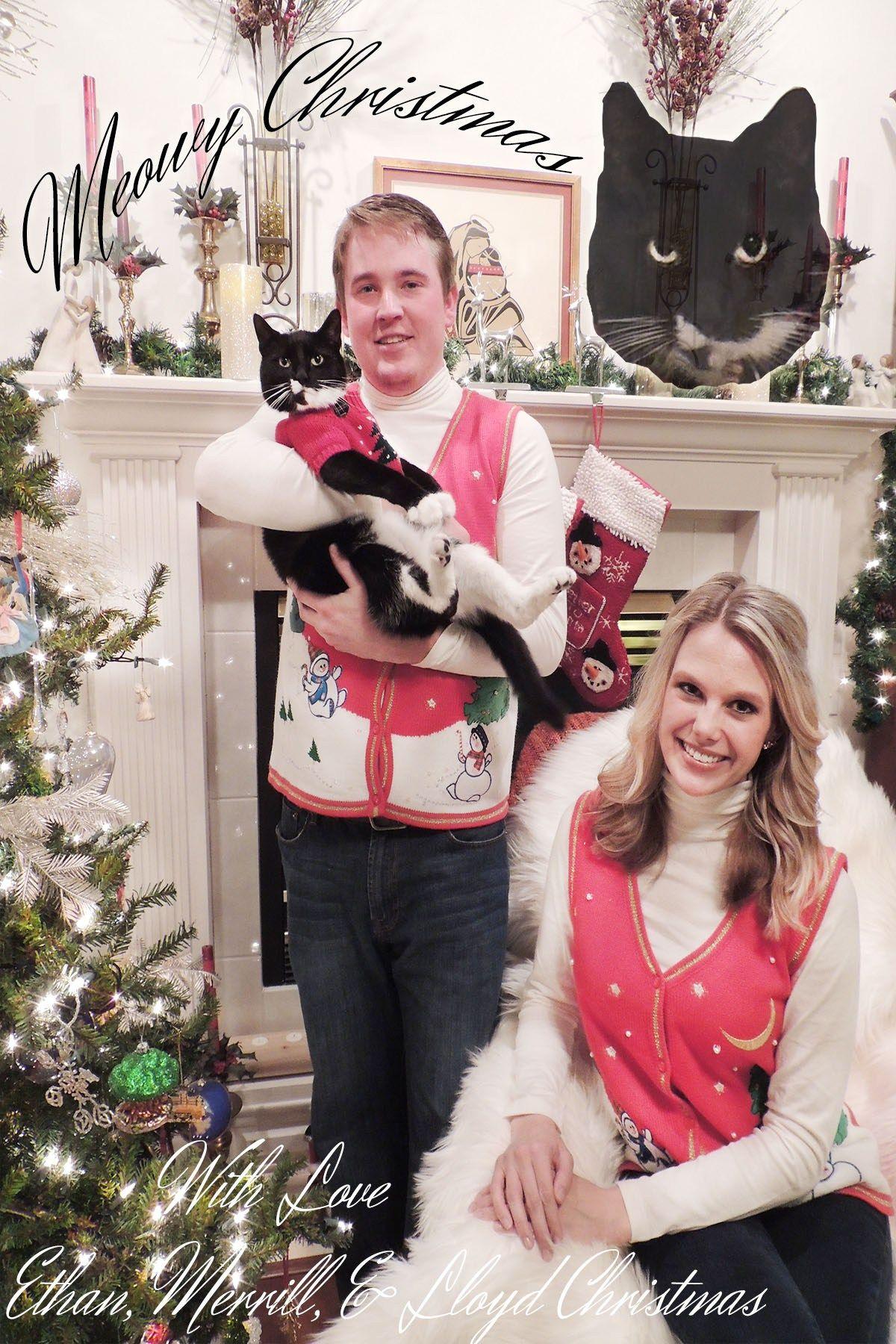 Meowy Christmas #awkwardfamilyphoto #christmas #holidaycard #catfamily