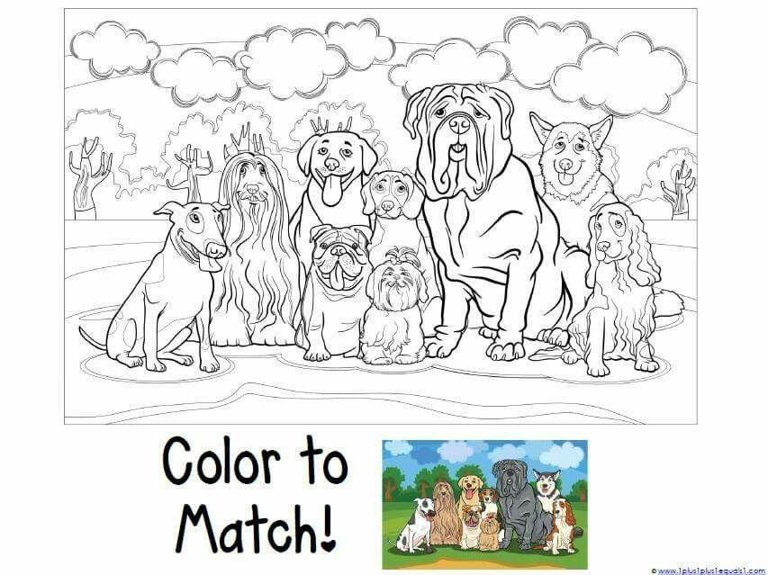 Pin by Shruti Ashar on alphabet nnumber drawing | Dog art ...