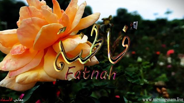 معنى اسم فاطنة وصفات حاملة هذا الاسم Fatnah Jewelry Crown Jewelry Crown