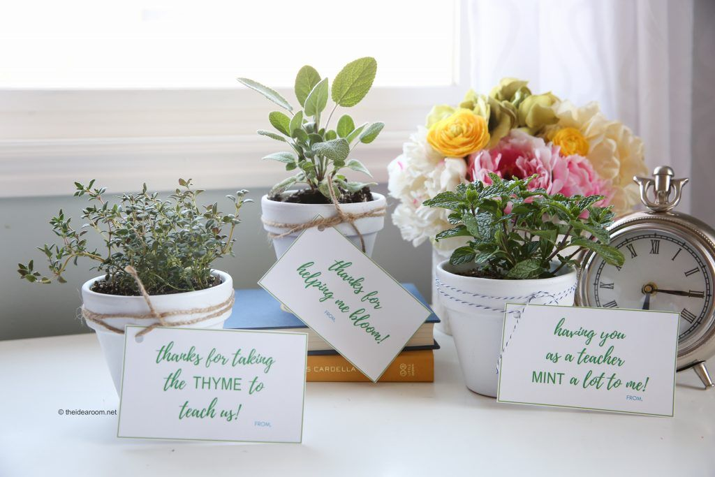 Herb Plants Teacher Gifts With Images
