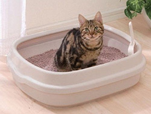 Iris Open Top Cat Litter Box With Scoop Tan More Info Could Be Found At The Image Url This Is An Affiliate Link Catli Cat Litter Cat Litter Pan Cat Top