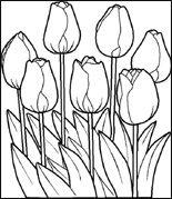 Kleurplaten Bloemen Tulpen.Tulpen Kleurplaat Gratis Kleurplaten Oud Hollands ステンド