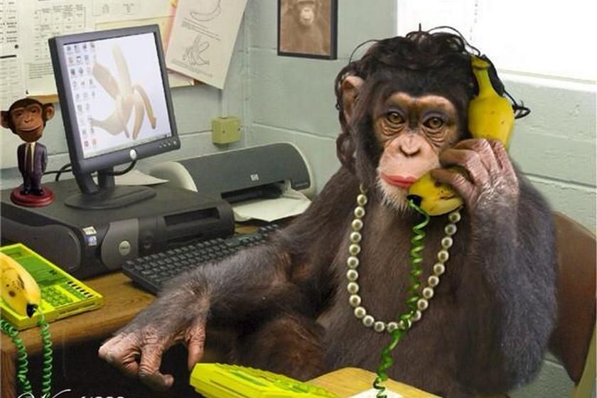 Monkeyoffice