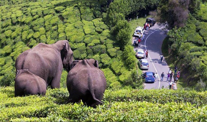 An unbelievable shot... Kerala tourism, Tourist places