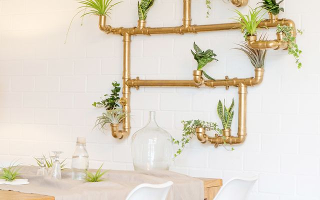 DIY-Anleitung: Imposante Pflanzenwand selber bauen via DaWanda.com