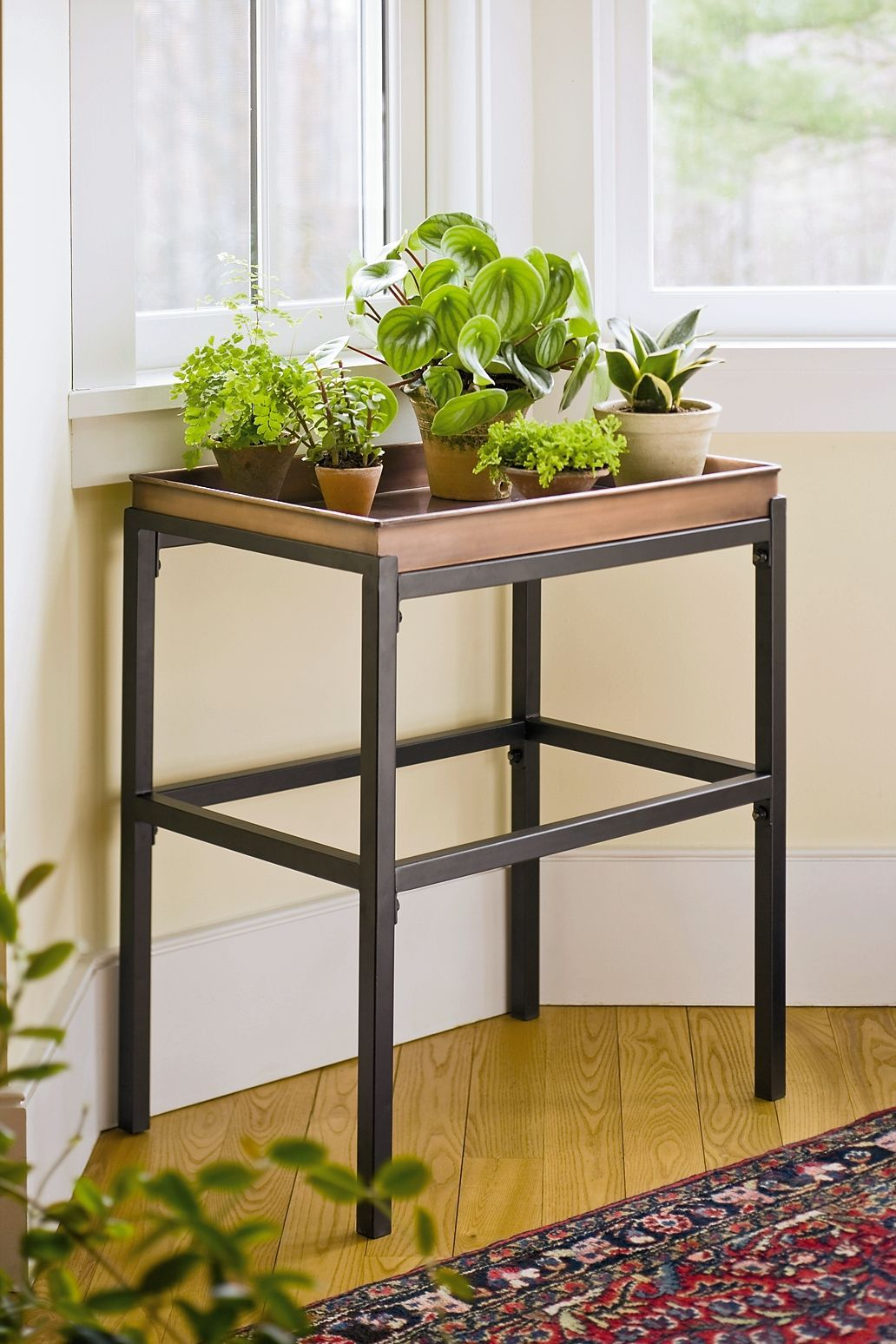 Plant Stand With Copper Tray Buy From Gardener S Supply Stand