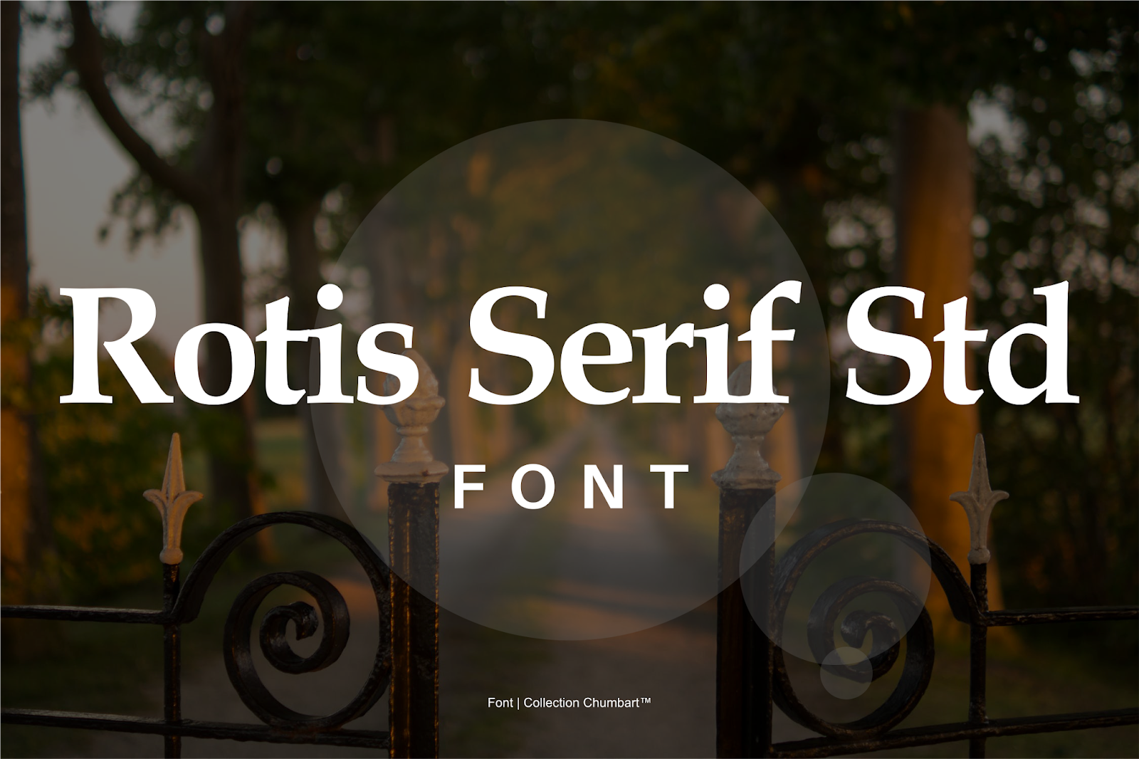 Rotis Serif Std Font Free Download | Collection Chumbart