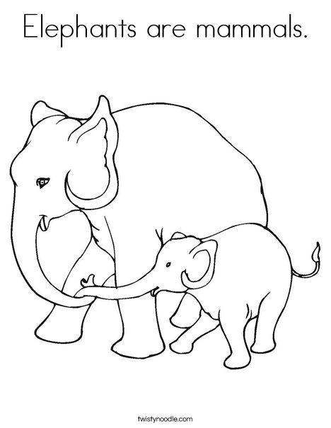 Elephants Are Mammals Coloring Page From Twistynoodle Com