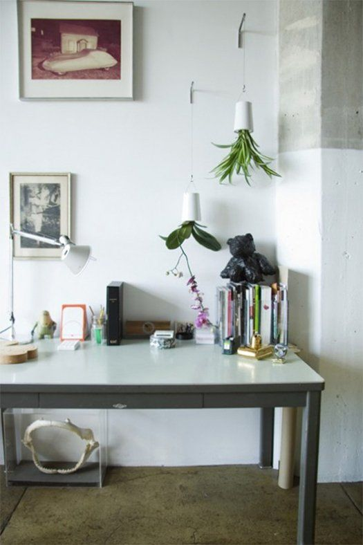 Nz Study Room: Grow Indoor Plants Upside Down With Sky Planters