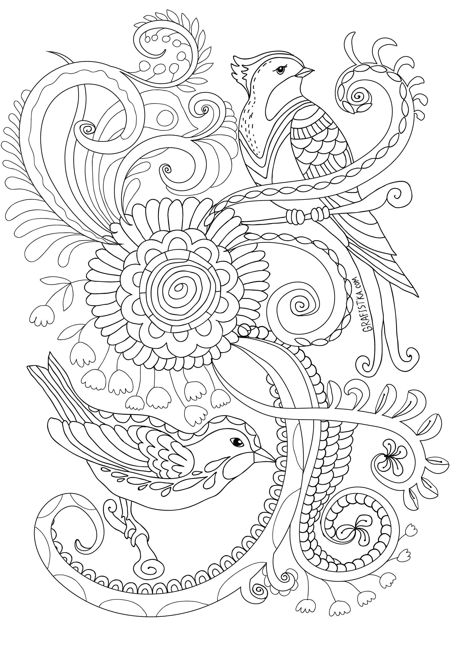 Раскраска антистресс птицы в саду | marqueteria | Pinterest | Vogel ...