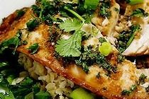 ginger and cilantro tilapia