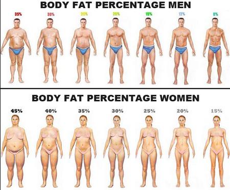 Can i lose body fat without losing weight quora fitness can i lose body fat without losing weight quora ccuart Images