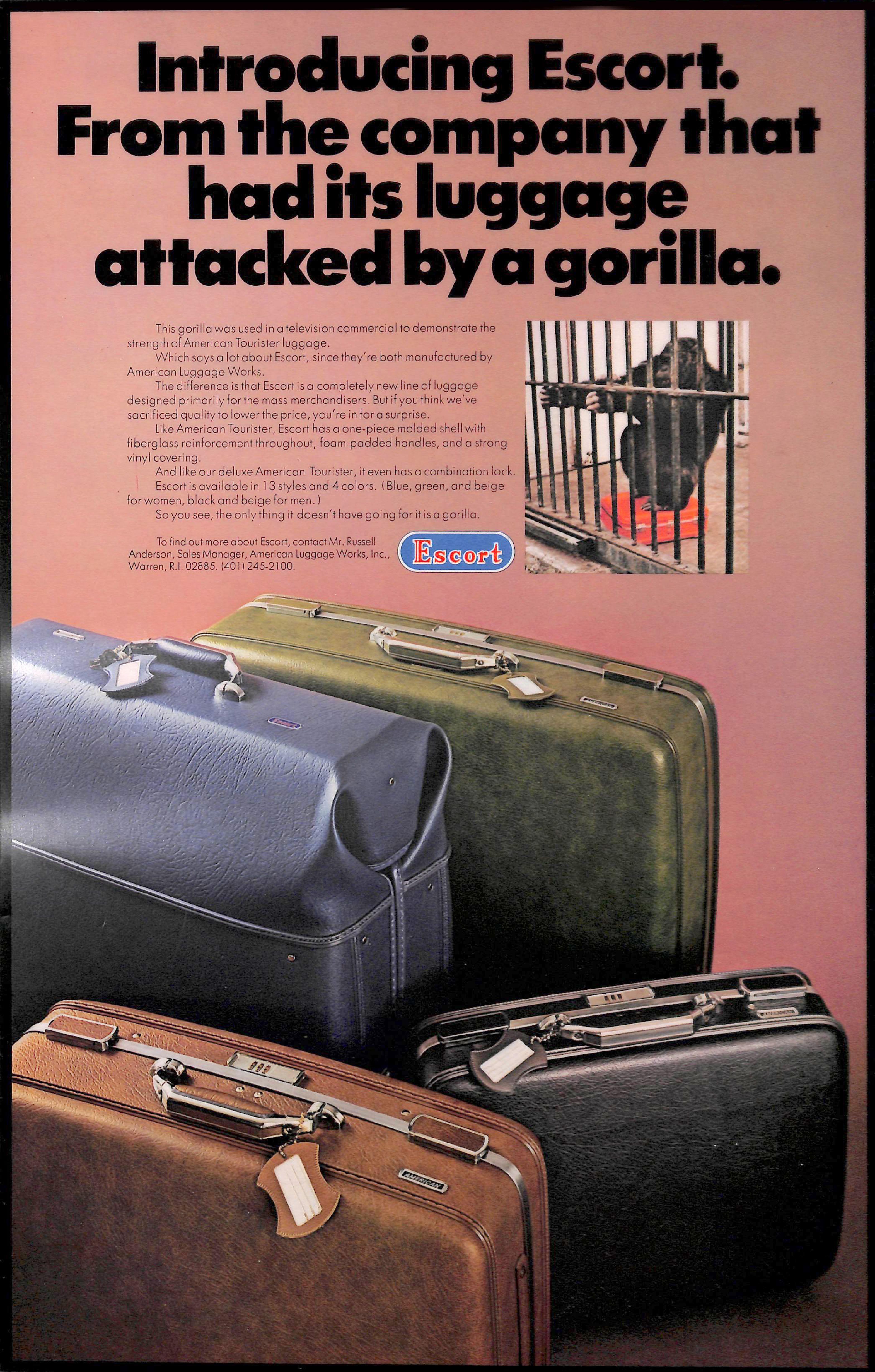 New york escort ads
