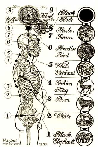 15++ 9 chakras in our body ideas in 2021