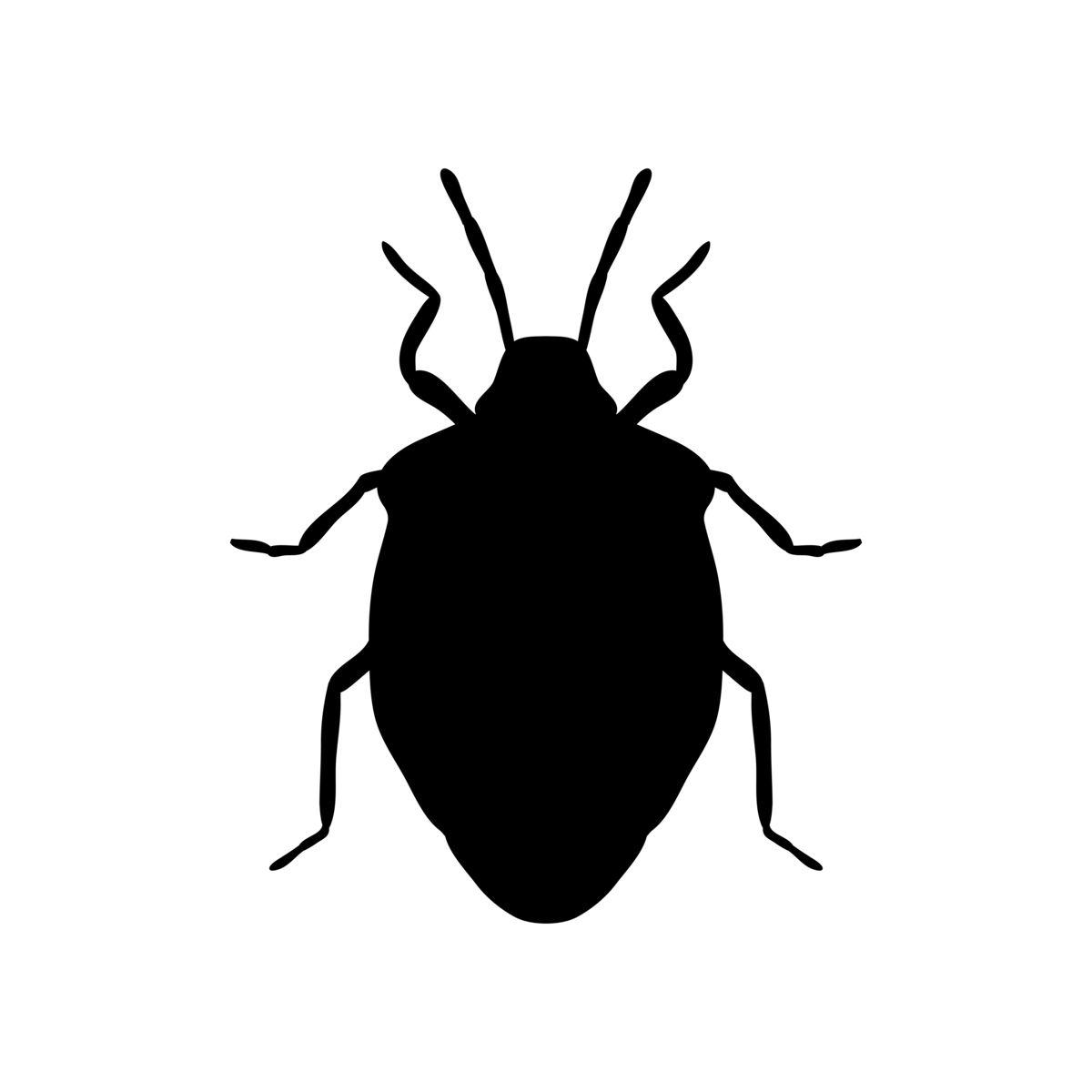 カメムシの効果的な駆除方法5つとおすすめ殺虫剤top10 プロ監修