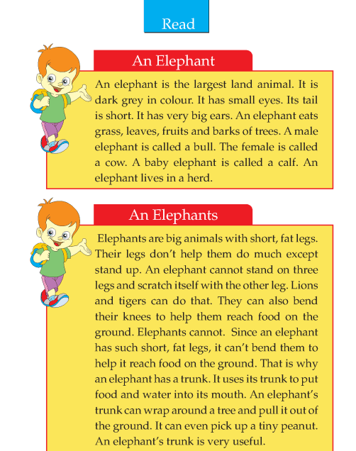 Writing Skill Grade 2 The Elephant Mentor Text Descriptive Reading Comprehension Lessons An Essay On