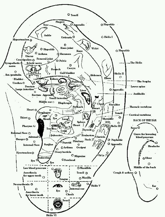Accupressure Points For The Ear