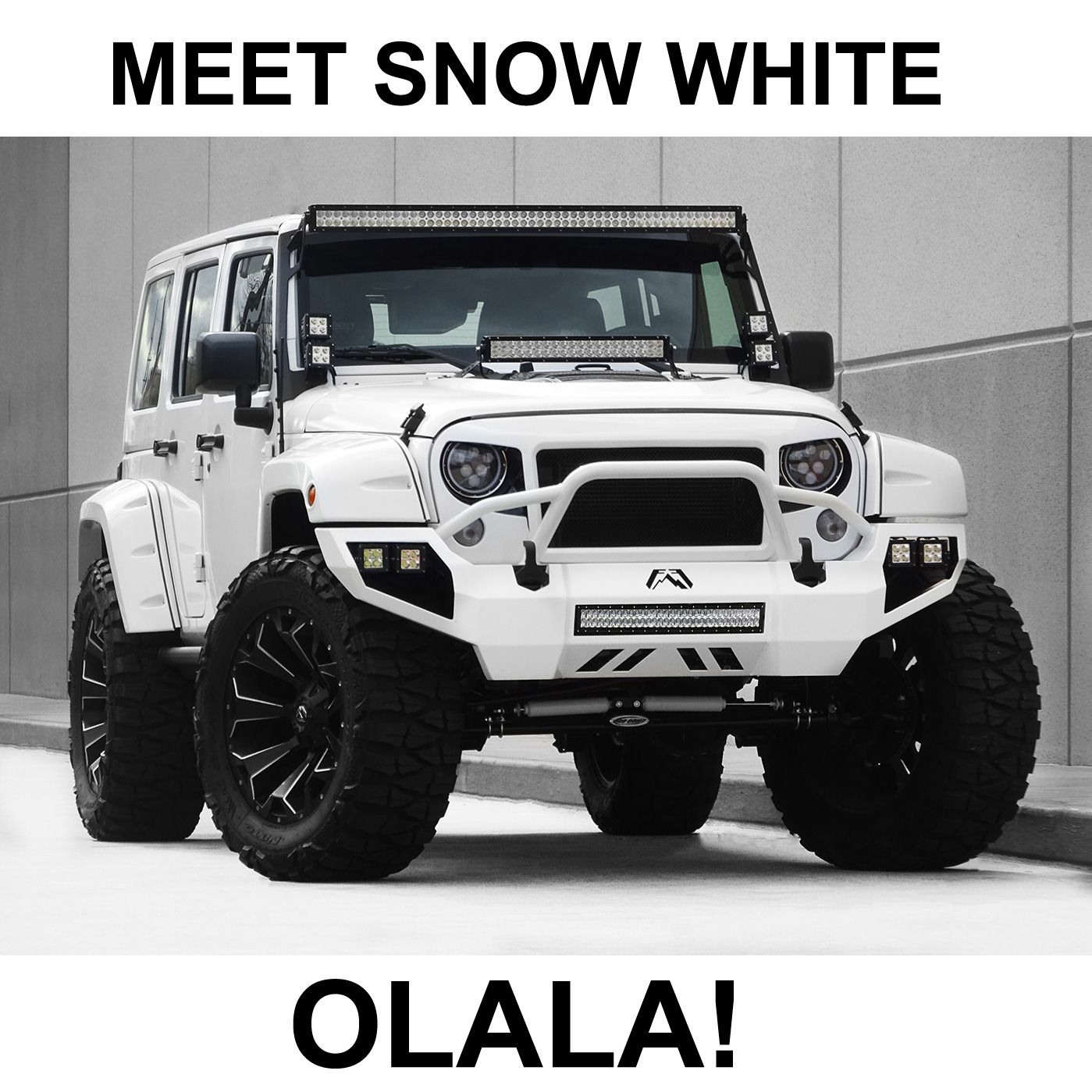 Meet Snow White! jeep jeepwrangler (With images) Jeep