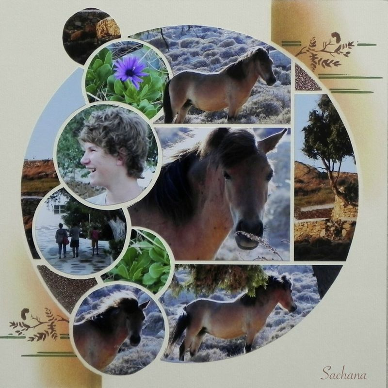 Chevaux Le Scrap De Sachana Cheval Scrapbooking Europeen Azza