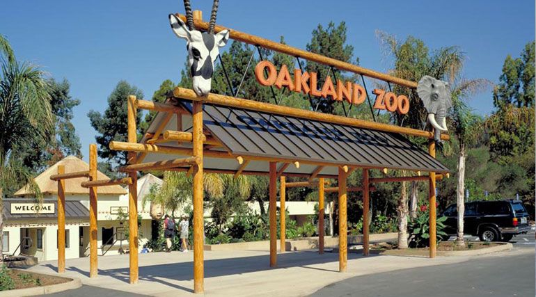 oakland zoos newest addition - 770×427