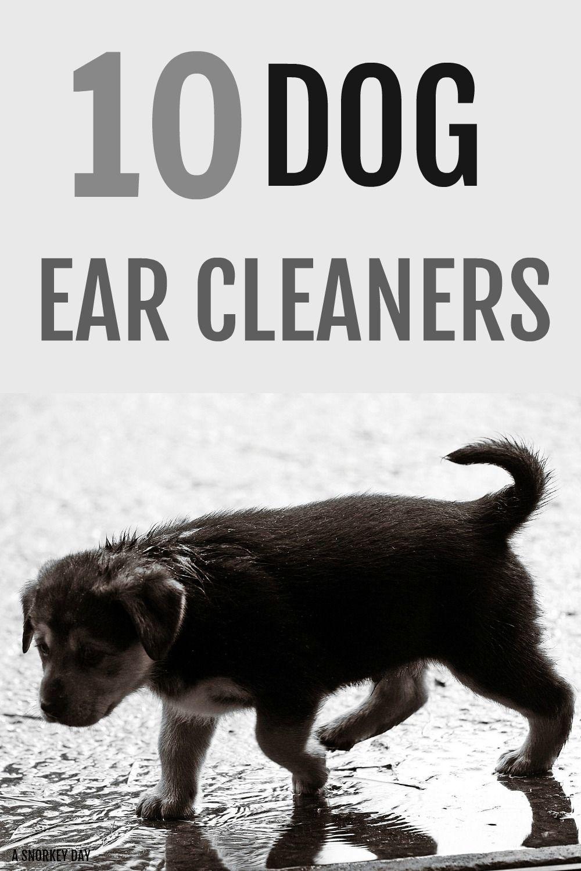 10 dog ear cleaners dog ear cleaner ear cleaning dogs