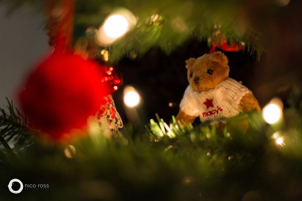 Merry Christmas!! This Years Tree Has Been Dressed With Macyu0027s Teddy Bears!  For