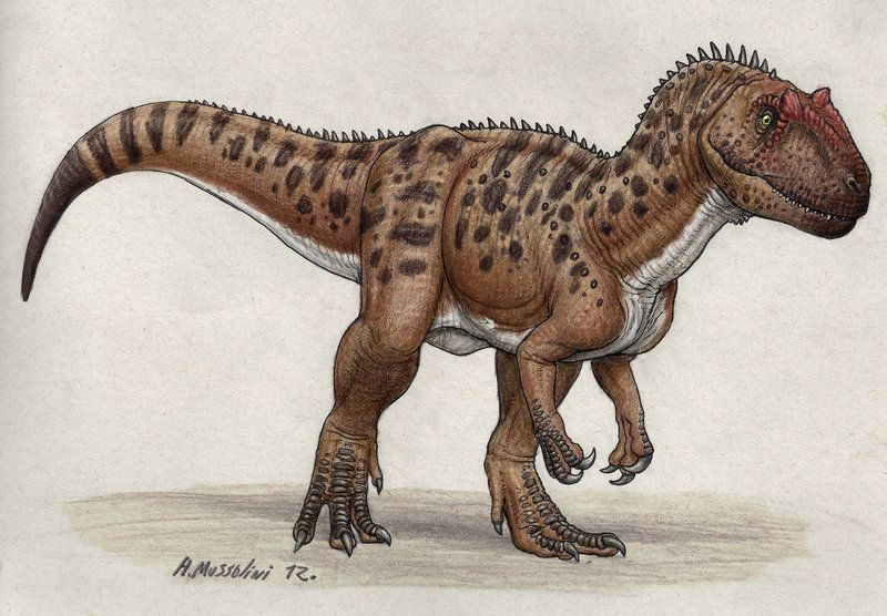 Piatnitzkysaurus by BrokenMachine86.deviantart.com   Megalosauria ...