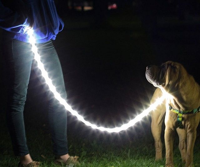Luminoodle versatile led light rope luminoodle is the worlds first completely waterproof flexible ultra bright rope light that aloadofball Gallery