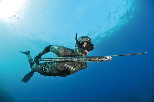 Cressi gear for the true spear fishermen spearfishing for Diving and fishing mural