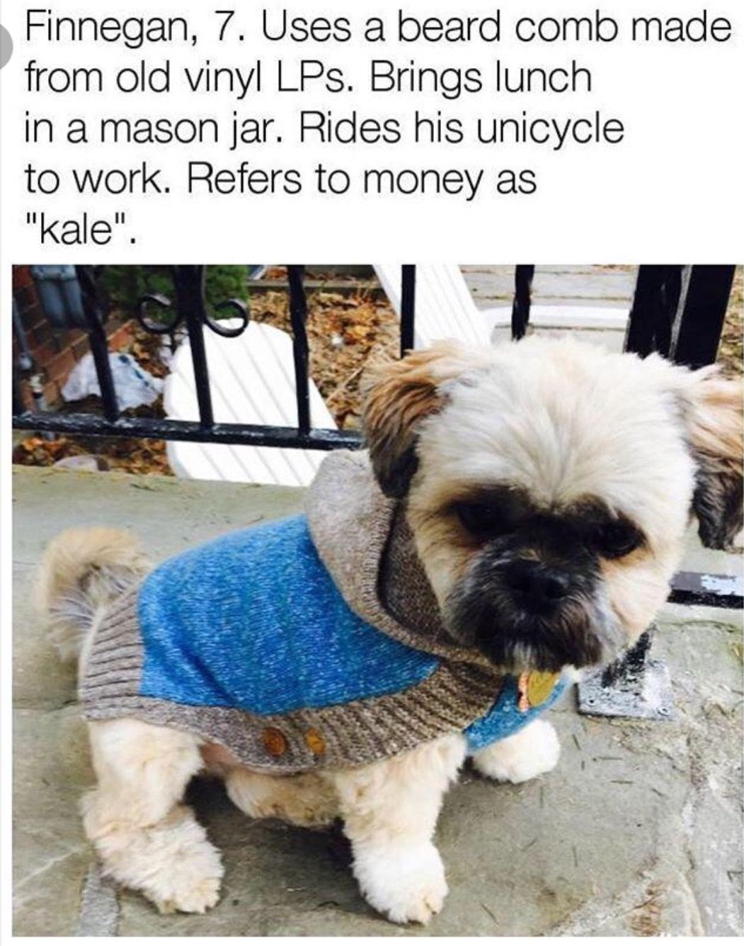 Pin by tabatha carter on whous a good boy pinterest